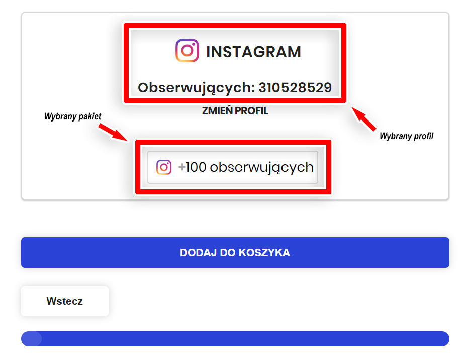 instagram followers - wybór profilu